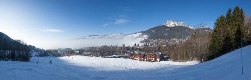 Panoramique sur Bernex